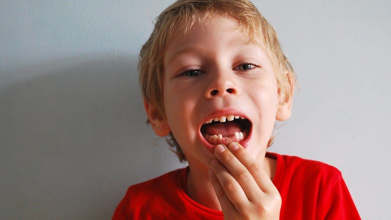 senza denti 1 1280